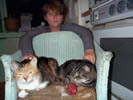 cats on chair and lesley.jpg